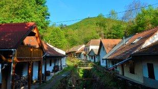 Kazinczy emléktúra a Zempléni-hegységben - Regmec 100