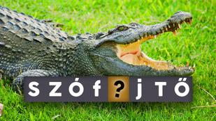 Szófejtő: Miért hullat a krokodil könnyeket? Hullat egyáltalán?