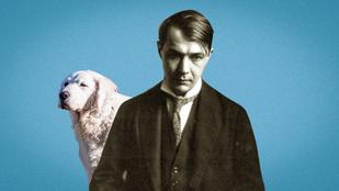 Kutya, macska, mókus – a legnagyobb magyar írók kedvenc állatai