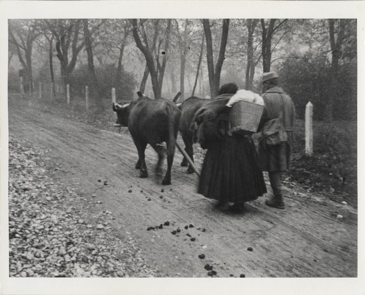 Vége a háborúnak, Erdély – I We Lost the War, Transylvania