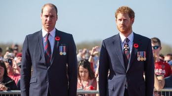 Dúl a rút viszály Vilmos és Harry között, nem békülnek a hercegek