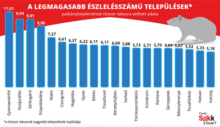ragcsalok TOP20 telepules patkany