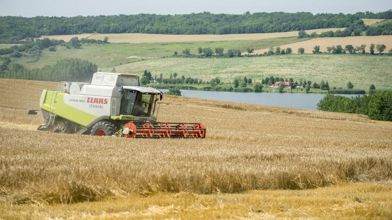 Viharkárokkal indul az aratás
