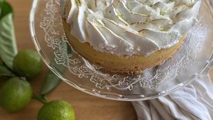 Kókuszos-lime-os vajas piskóta – remek, izgalmas nyári desszert