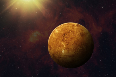 vénusz2