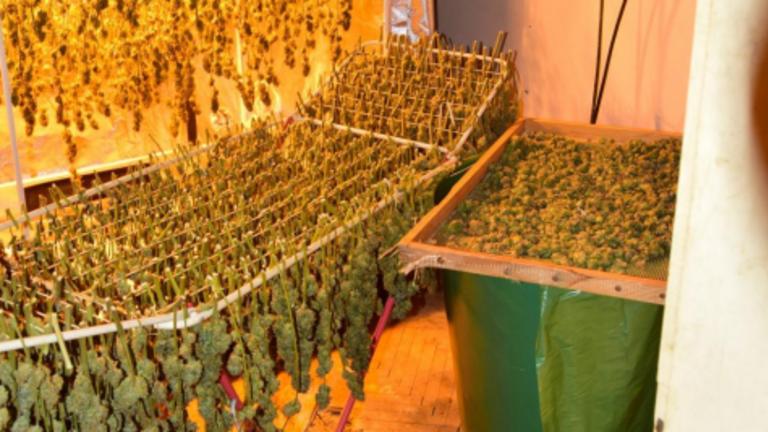 Ruhaszárítókon tárolták a csaknem harmincmillió forint értékű drogot