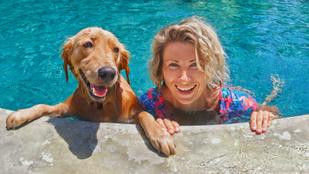 Ezekre a szabályokra figyelj, ha úszni vinnéd a kutyád
