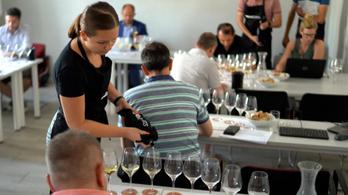 A legjobb magyar borok – WineLovers 100 verseny