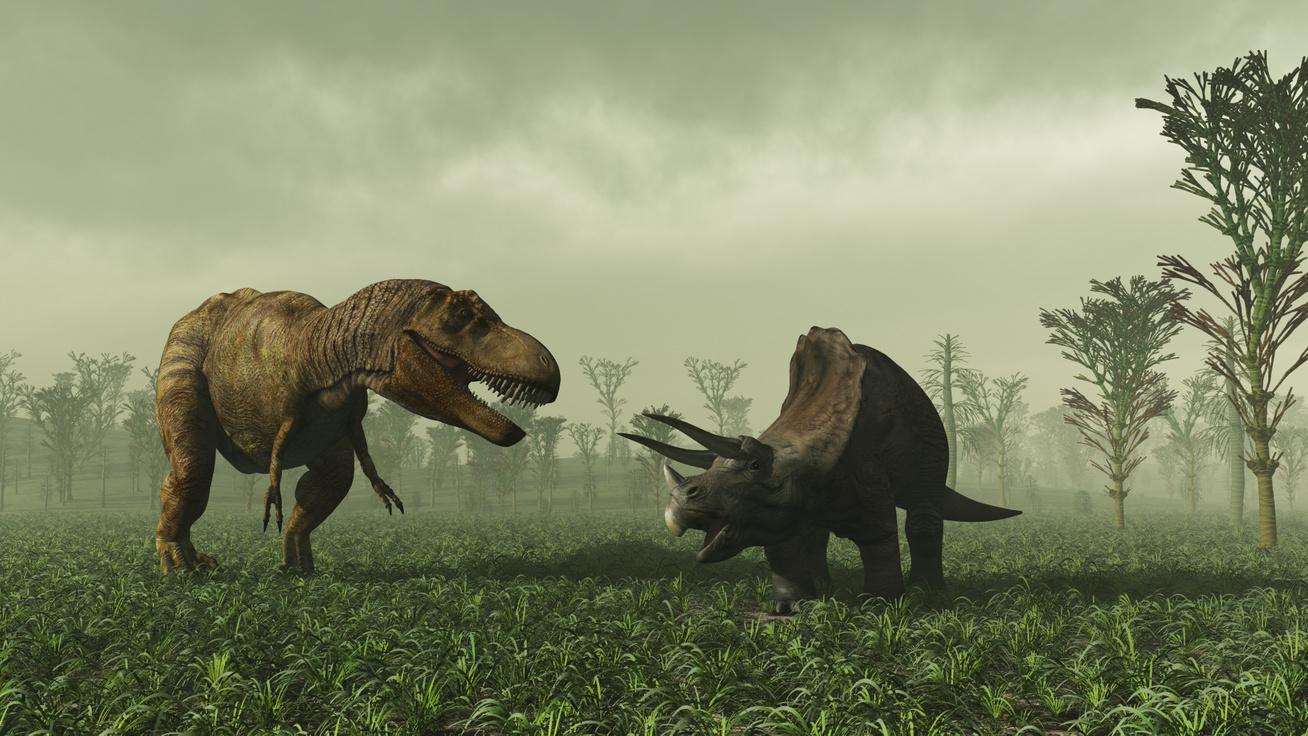 dinoszauruszok2