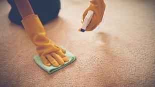 Foltos szőnyeg tisztítása: 10 kipróbált tipp egy profi szőnyegtisztítótól