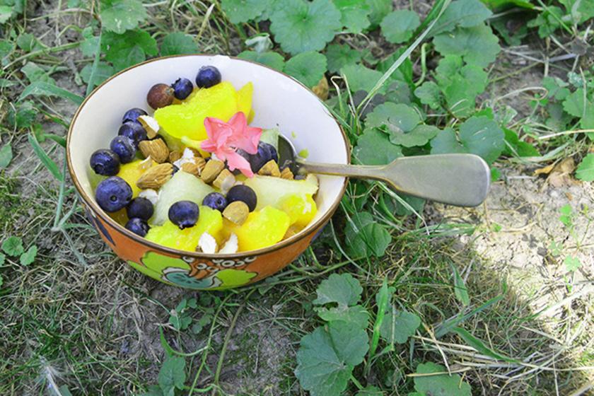 nyári gyümölcssaláta