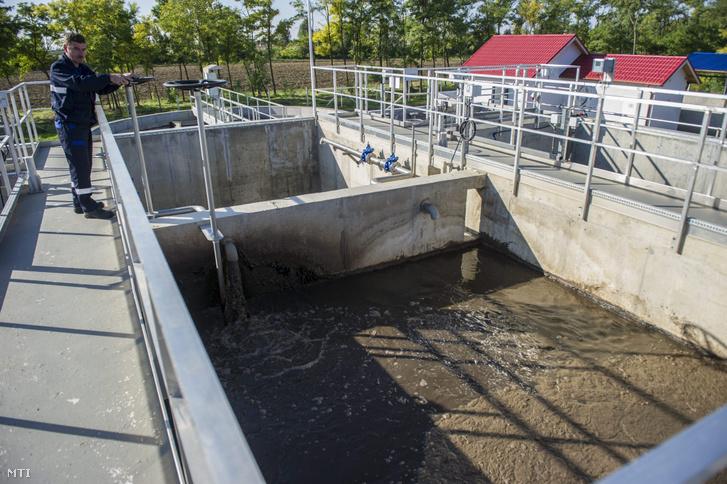 Az Alföldvíz Regionális Víziközmű-szolgáltató Zrt. dolgozója a szennyvíztisztító telepen 2013. szeptember 25-én