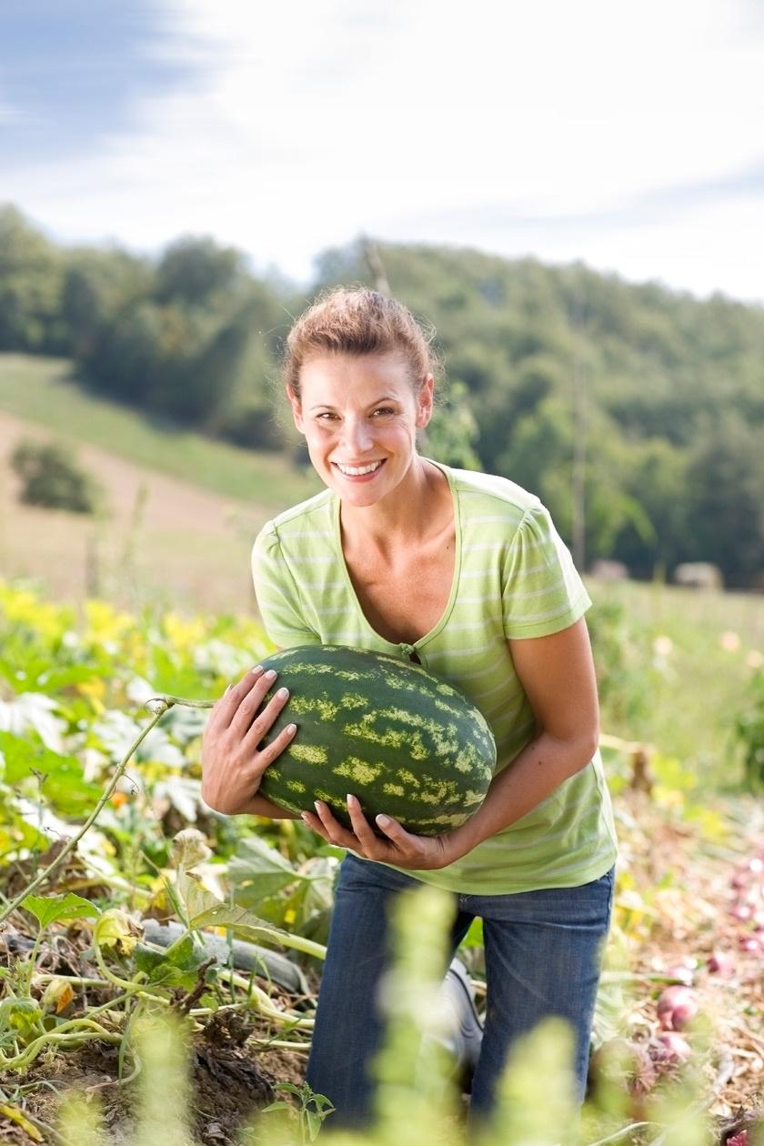 görögdinnye2