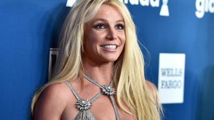 Britney Spears aktfotót posztolt