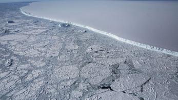 Ismeretlen mohát fedeztek fel az Antarktiszon, a kutatók nem értik