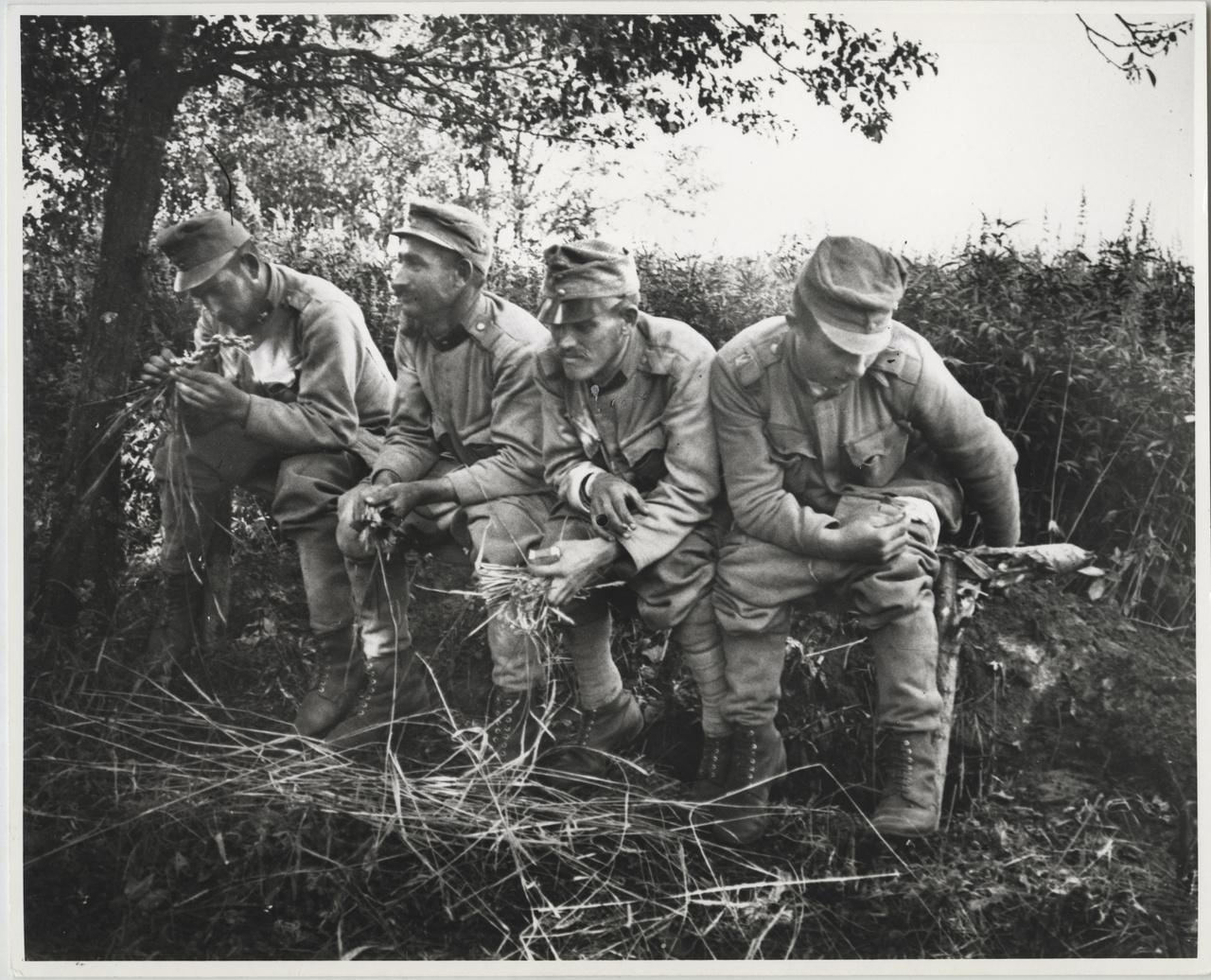 Latrinán, Golgory, Lengyelország, 1915. július 22.