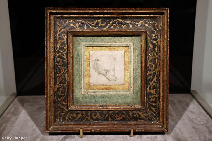 Leonardo most elárverezett Medvefej című rajza
