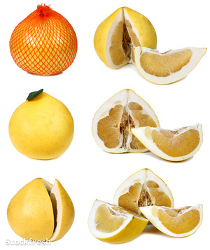 stockfresh 813470 pomelo-grapefruit sizeM