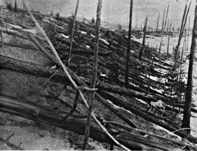 Leonyid Kulik híres fotója 1927-ből a tungusztikai meteor becsapódási helyéről.