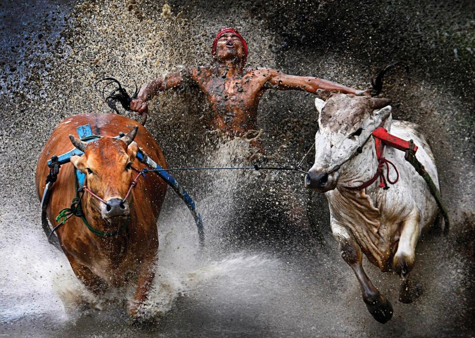 Sport, akció-egyedi, Első hely Bikafuttató-verseny Indiában