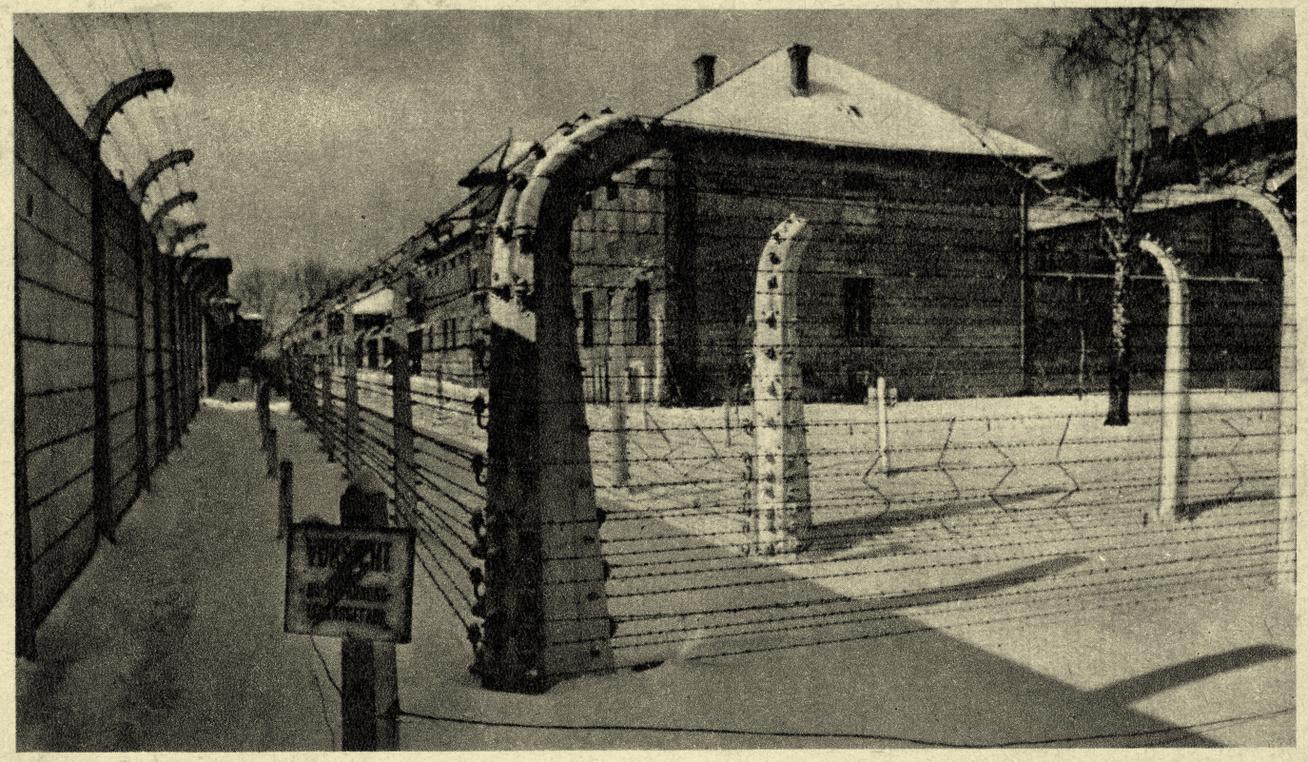 koncentrációs-tábor-bordély1
