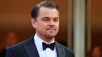 Drew Barrymore kommentben flörtölt Leonardo DiCaprióval
