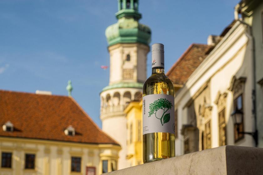 Vincellér---Sopron