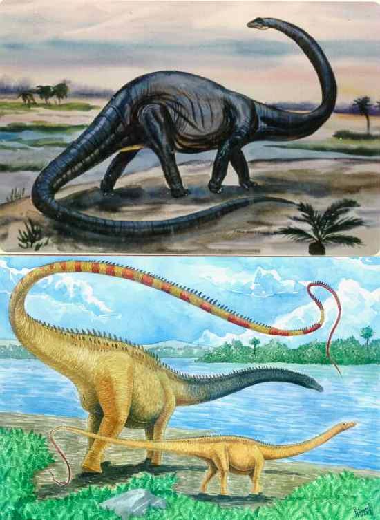 Diplodocus ábrázolása régen és ma