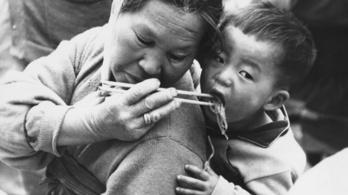 Idős nők influenszerkednek Dél-Koreában