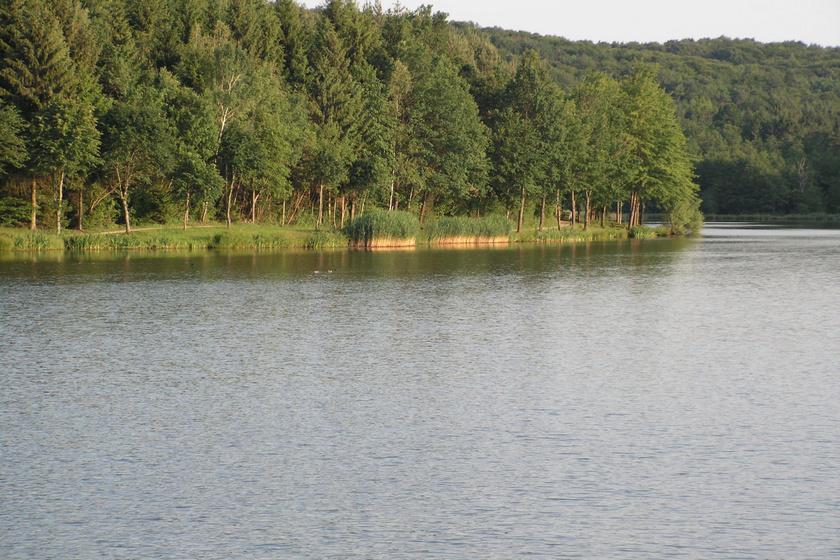 10 csodálatos, kihagyhatatlan látnivaló az Őrségben: a paradicsomi szépségű Hársas-tóban lubickolni is lehet