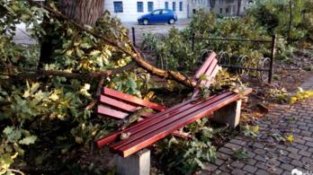 Hatalmas pusztítást végzett a vihar, egymilliárd forint is lehet kár