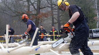 A vihar miatt favágónak álltak a somogyi tűzoltók