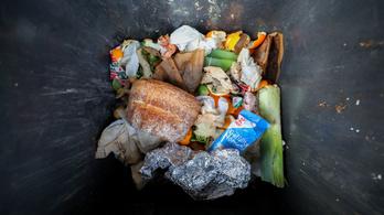 Félelmetes pazarlás: az összes megtermelt élelmiszer 40 százaléka a kukában végzi
