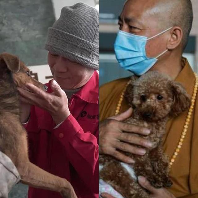 8 ezer kutyát mentett meg a biztos haláltól a sanghaji szerzetes: 27 éve ad helyet nekik a kolostorban