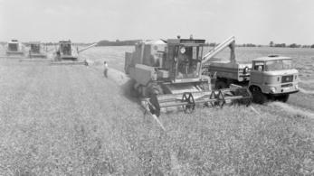 Retró aratást rendeztek Vas megyében