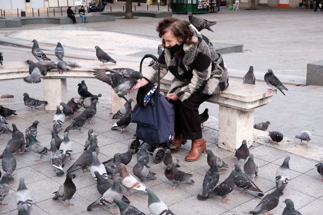 Idős nő eteti a galambokat a Fővám téren
