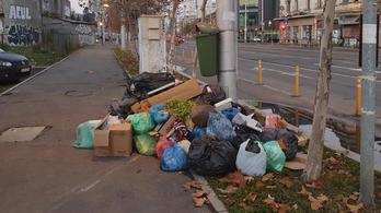 Túl sok a szemét Bukarestben, vészhelyzetet kellett hirdetni
