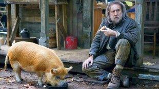 Nicolas Cage a malac nyomá-ban