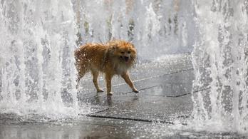 Félelmetes hőség jön, kiadták a harmadfokú figyelmeztetést