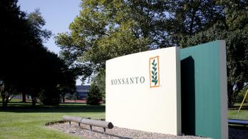 Botrány a gyomirtó körül: adatokat gyűjtött szimpatizánsairól és ellenfeleiről a Monsanto