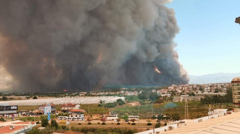 Sokkoló felvételek: erdőtüzek pusztítanak Törökországban és Libanonban
