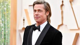 Ez a szingli apuka Brad Pitt kiköpött mása, de nem találja élete párját és a földeken dolgozik