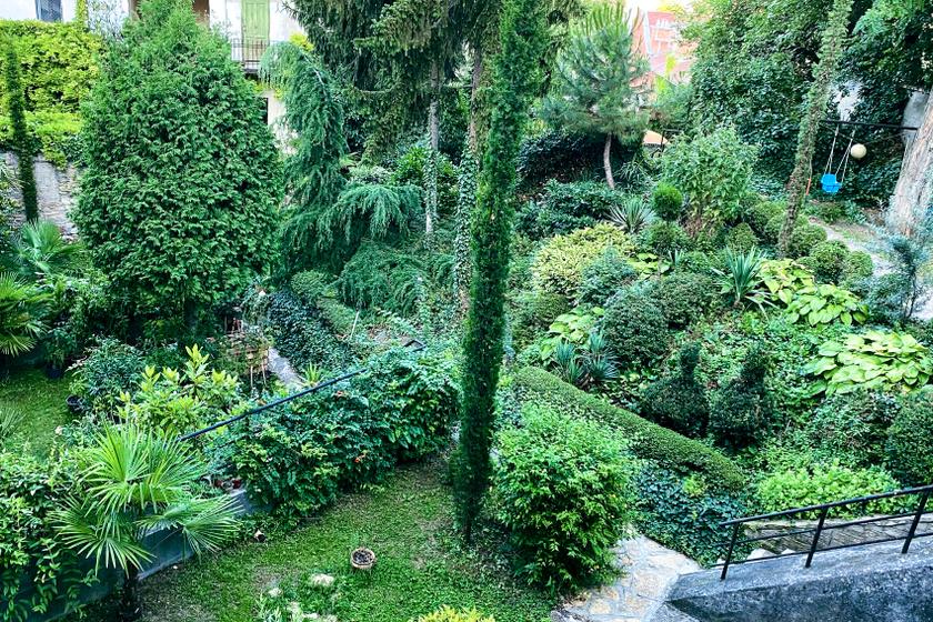 Mediterrán oázis bújik meg Budapest I. kerületében: a Víziváros legszebb kertjében jártunk