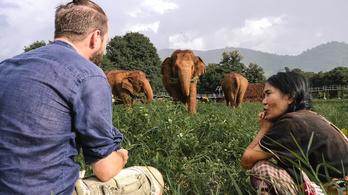 Etikus elefántparkok, és ami mögöttük van