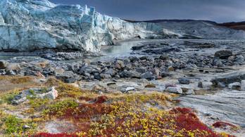 Valódi dráma zajlik Grönlandon