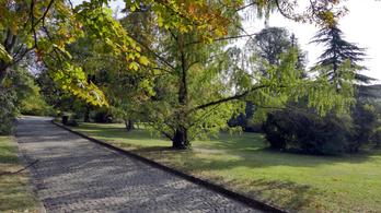 Bezárhatják a volt Kertészeti Egyetem Villányi úti campusát
