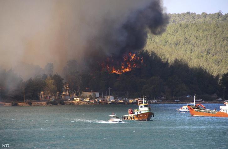 Erdőtűz pusztít a törökországi Bordum közelében 2021. július 29-én