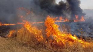 Óriási tűz ég Szicíliában, nyolcszáz tűzoltó küzd ellene