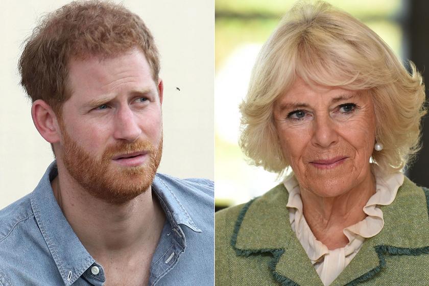 Kamilla hercegnének van félnivalója Harrytől: a királynő is retteg a botránytól
