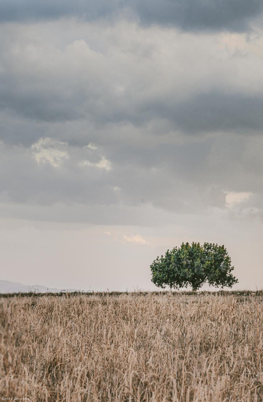 augusztus-időjárás1